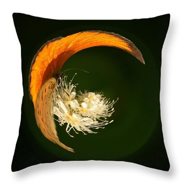 Throw Pillow featuring the photograph Scarce Copper 4 by Jouko Lehto