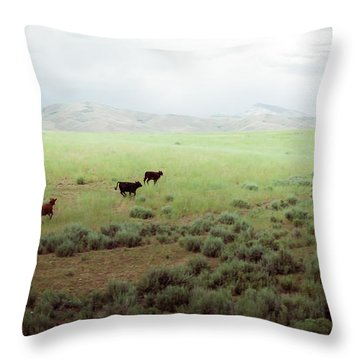 Scared Up Throw Pillow