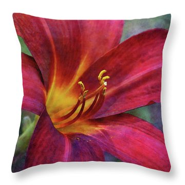 Scarlet And Gold Dust 3716 Idp_2 Throw Pillow