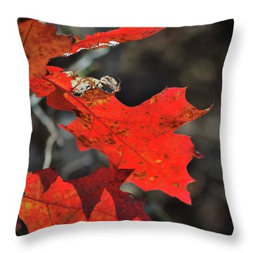 Scarlet Autumn Throw Pillow