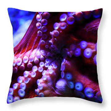 Scarlet Below Throw Pillow