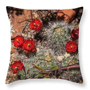 Scarlet Cactus Blooms Throw Pillow