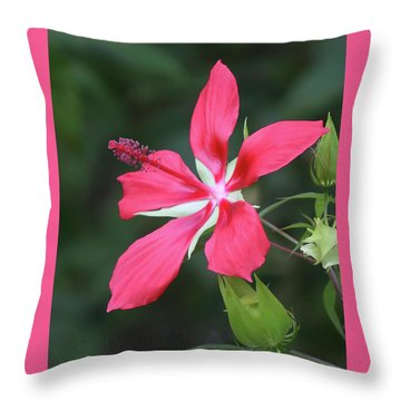 Scarlet Hibiscus #4 Throw Pillow