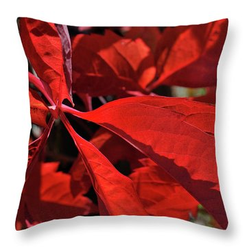 Throw Pillow featuring the photograph Scarlet Intensity by Ron Cline