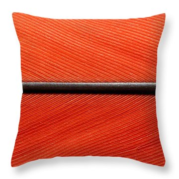 Scarlet Macaw Feather Throw Pillow
