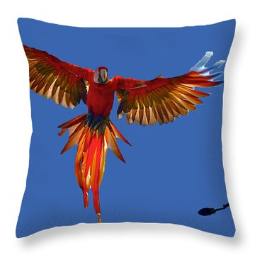 Scarlet Macaw On The Osa Peninsula Throw Pillow