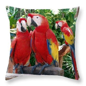 Scarlet Macaws Throw Pillow by Ellen Henneke