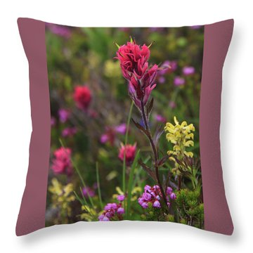 Scarlet Paintbrush Throw Pillow