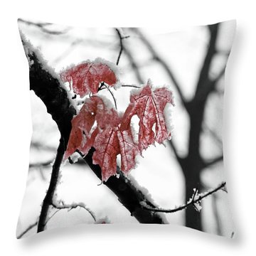 Scarlet Red Leaves In Winter Throw Pillow