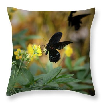 Scarlet Swallowtail Butterfly On Bright Yellow Flower With Other Throw Pillow