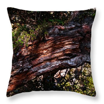 Scarred Throw Pillow by Christopher Holmes