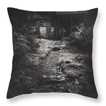 Scary Old Abandoned Hut In Creepy Deserted Forest Throw Pillow