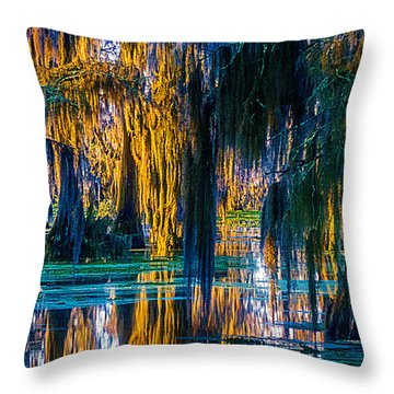 Scary Swamp In The Daytime Throw Pillow