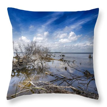 Scattered Clouds Throw Pillow by Alan Raasch