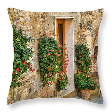 Scene In Tuscany Throw Pillow by Vickie Bushnell
