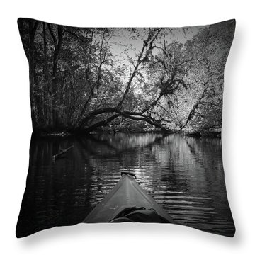 Scenes From A Kayak, No. 8 Throw Pillow