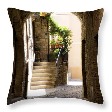 Scenic Archway Throw Pillow