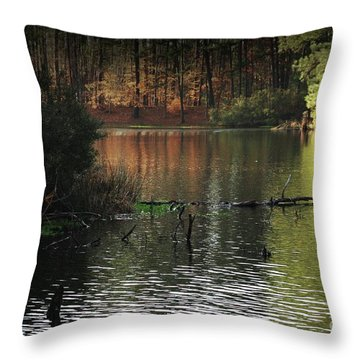 Throw Pillow featuring the photograph Scenic Elder Lake by Kim Henderson