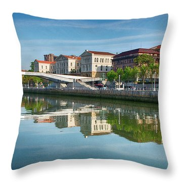 Scenic River View Throw Pillow by James Hammond