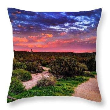 Scenic Trailhead Throw Pillow