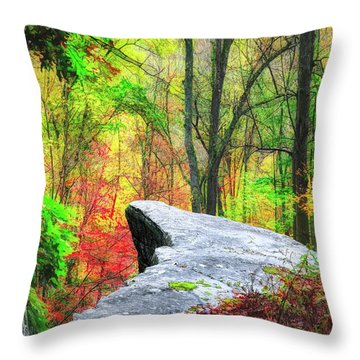 Scenic View Throw Pillow