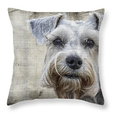 Schnauzer Fellow Throw Pillow