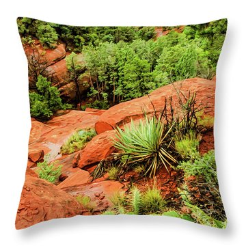 Schnebly Hill 07-057 Throw Pillow