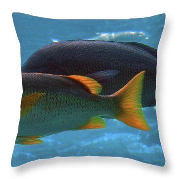 School Age Throw Pillow by DigiArt Diaries by Vicky B Fuller