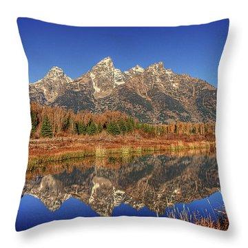 Schwabacher Landing Grand Teton National Park Throw Pillow by James Hammond