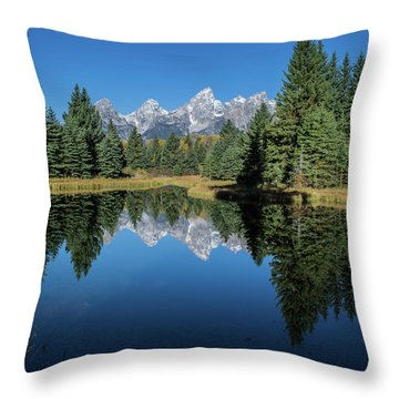 Schwabacher Landing Throw Pillow by Mary Hone