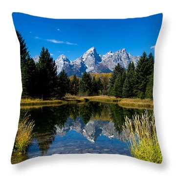 Schwabacher Landing Reflection Throw Pillow