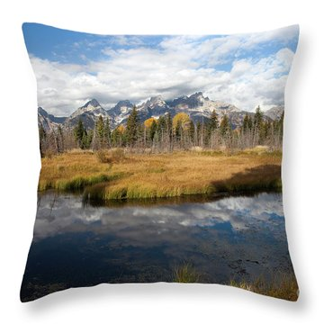 Schwabachers Landing, Grand Teton National Park Wyoming Throw Pillow