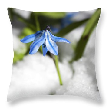 Throw Pillow featuring the photograph Scilla In Snow by Jeff Severson