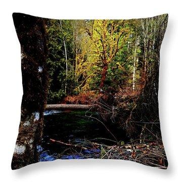 Scoggins Creek 3 Throw Pillow