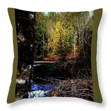 Scoggins Creek 3 Throw Pillow