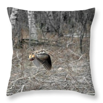 Scolopax Minor In-flight Throw Pillow