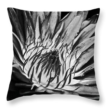 Scorched Lotus Throw Pillow