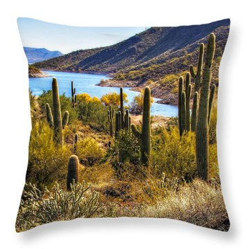 Scorpion Cove Throw Pillow