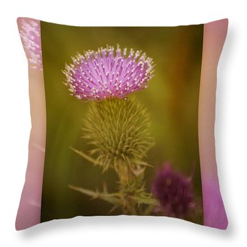Scotch Thistle Throw Pillow by Holly Kempe
