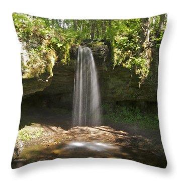 Scott Falls 4750 Throw Pillow