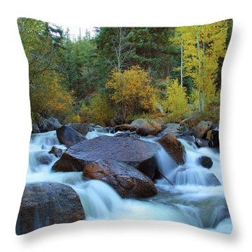 Throw Pillow featuring the photograph Scott Gomer Creek At Guanella Pass by Marie Leslie