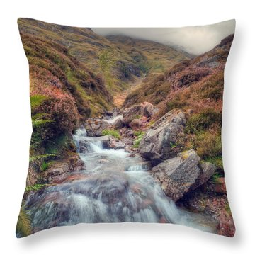 Scottish Mountain Stream Throw Pillow by Ray Devlin