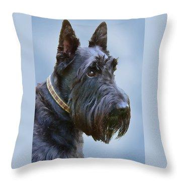 Scottish Terrier Dog Throw Pillow by Jennie Marie Schell