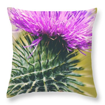 Throw Pillow featuring the photograph Scottish Thistle by Ray Devlin