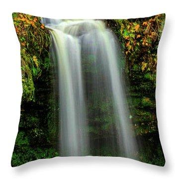 Scotts Fall Throw Pillow