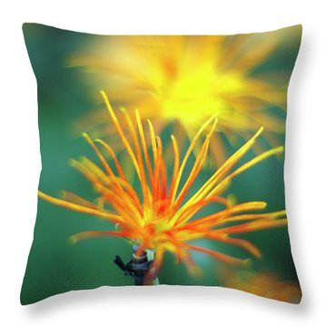 Scraggly Mum Throw Pillow