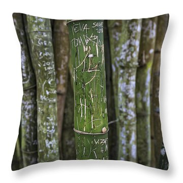 Scratched Bamboo Throw Pillow