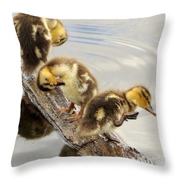 Preening Frenzy Throw Pillow