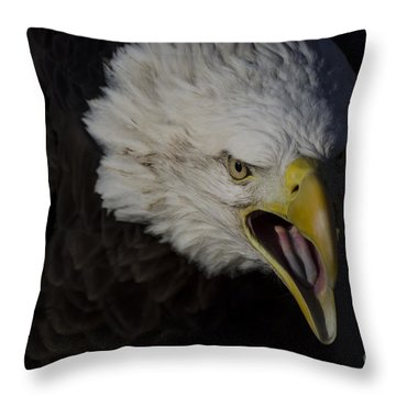 Screaming Eagle Throw Pillow