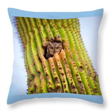 Screech Owl In Saguaro Throw Pillow